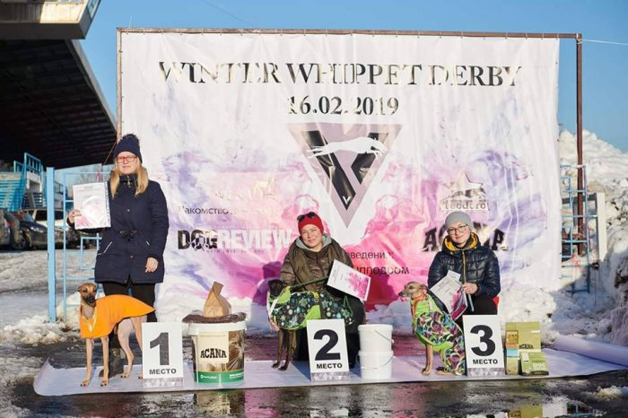 16.02.2019 - V-Team Winter Whippet Derby