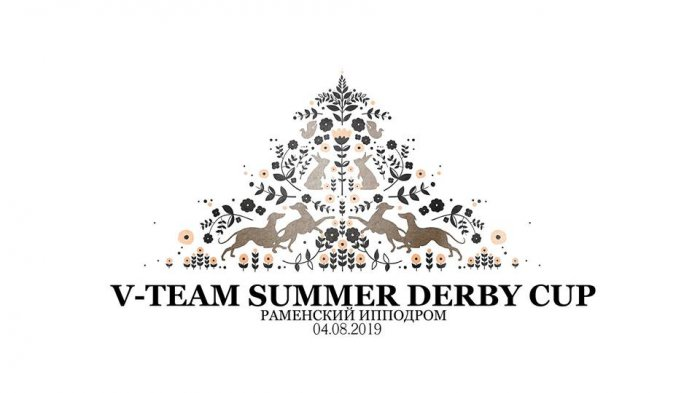 4.08.2019 V-TEAM SUMMER DERBY CUP